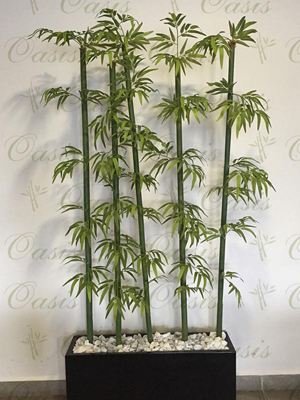 Oasis Decoración y Jardinería | Plantas de Bambú Artificial en Monterrey