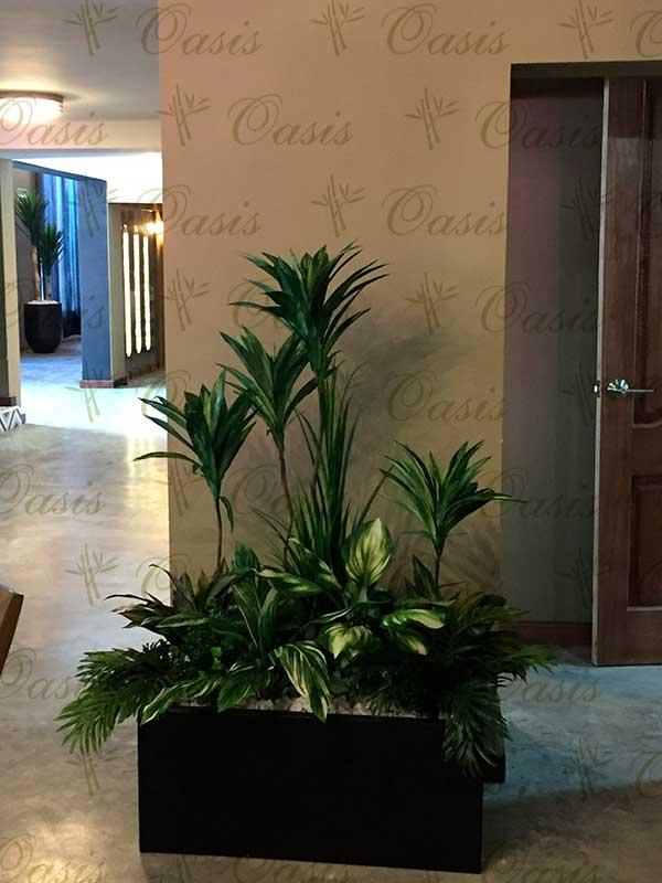Oasis decoraci n y jardiner a jardineras de interior en for Plantas de interior artificiales