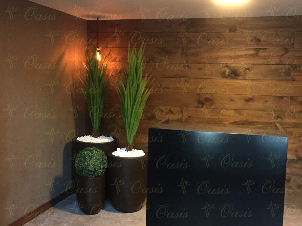 Oasis decoraci n y jardiner a plantas artificiales for Plantas decorativas para oficina